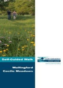 Leaflet Guided Tour Castle Meadows